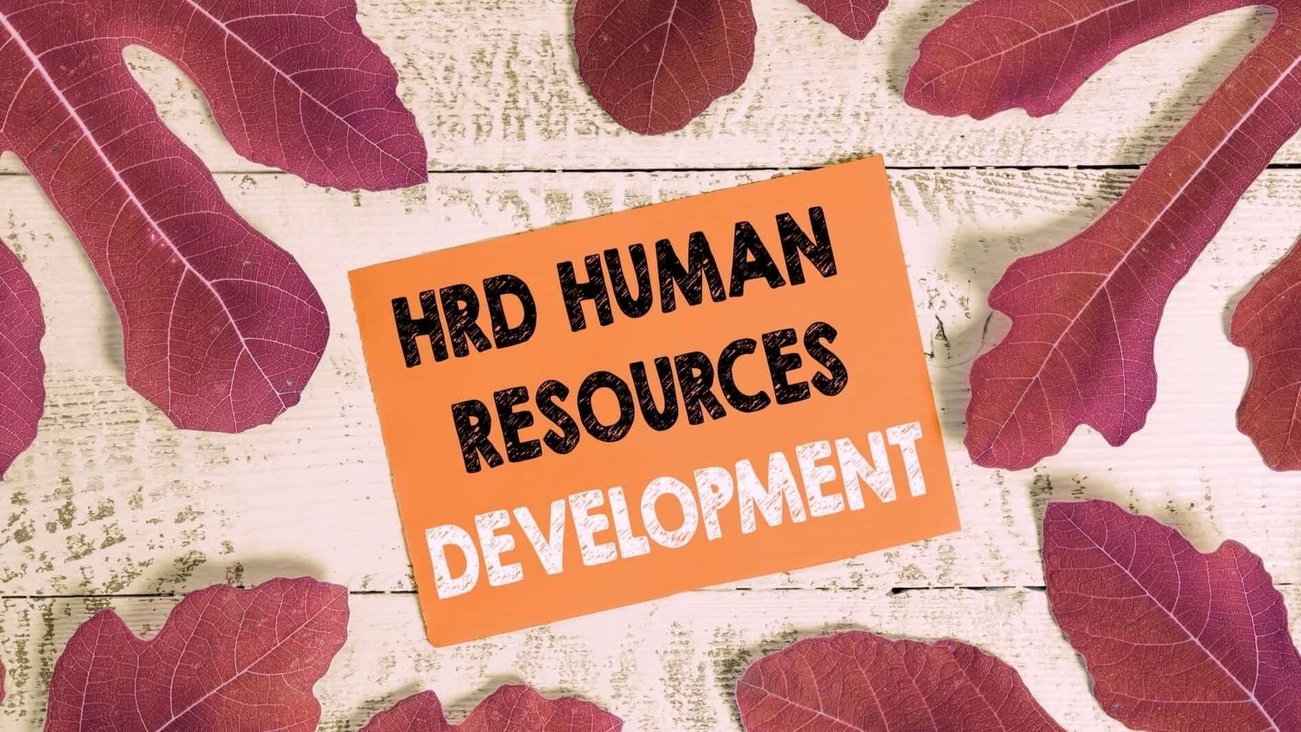 Strategi HRD dalam Menghadapi Virus Corona