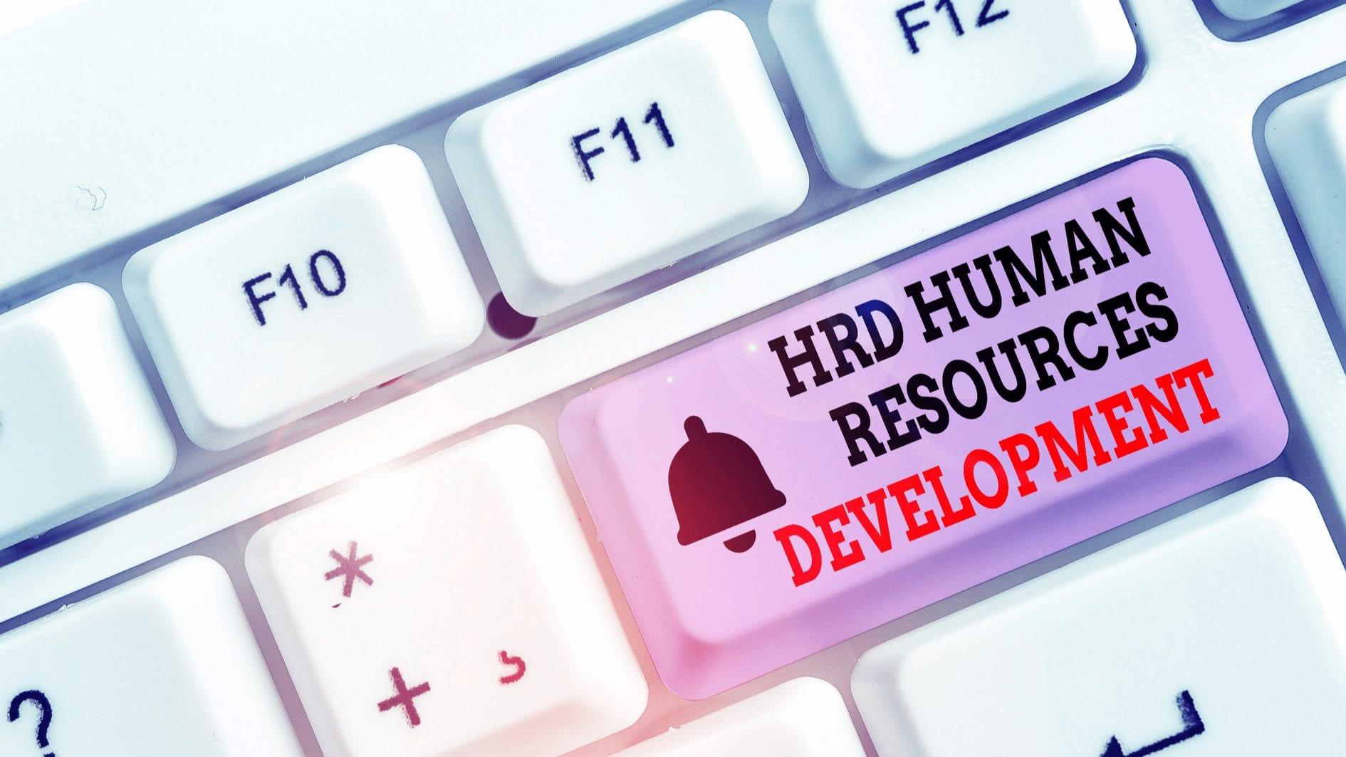 Cara HRD Kelola Kinerja Karyawan yang Bekerja dari Rumah