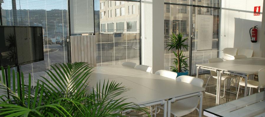 Pencahayaan - Desain Kantor untuk Produktivitas Karyawan