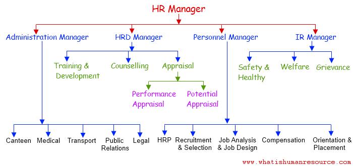 Seluk Beluk HR Manager, Berikut Hal-hal yang Wajib Diketauhi